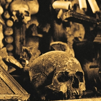Encoffination - Elegant Funerals for the Unknown Dead - MLP