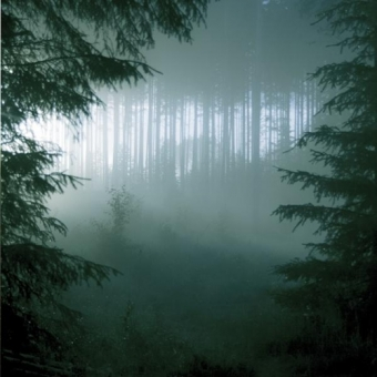 Thy Serpent - Forests of Witchery - CD