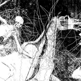 Ravencult - Temples of Torment - LP