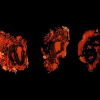 Deathspell Omega -  Kénôse - LP