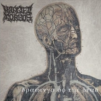 Mangled Torsos - Drawings of the Dead - CD