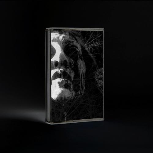 Insidious Omen - To Cast the Last Shadow - MC