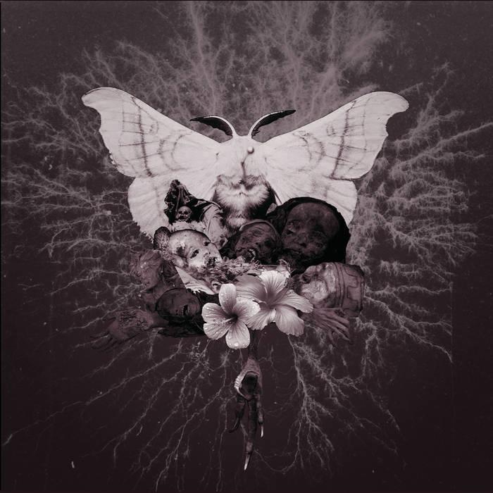 Celestial Grave - Pvtrefactio - EP