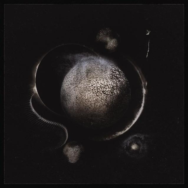 Enthroned - Cold Black Suns - Gatefold LP