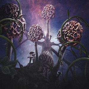 Blut aus Nord - Hallucinogen - Digipak CD