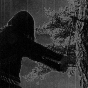 Zorn - Menschenfeind II - A.N. - CD