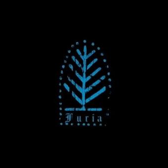 Furia - Grudzień za grudniem - LP