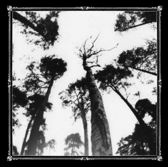 Ancestors Blood - When The Forest Calls - CD